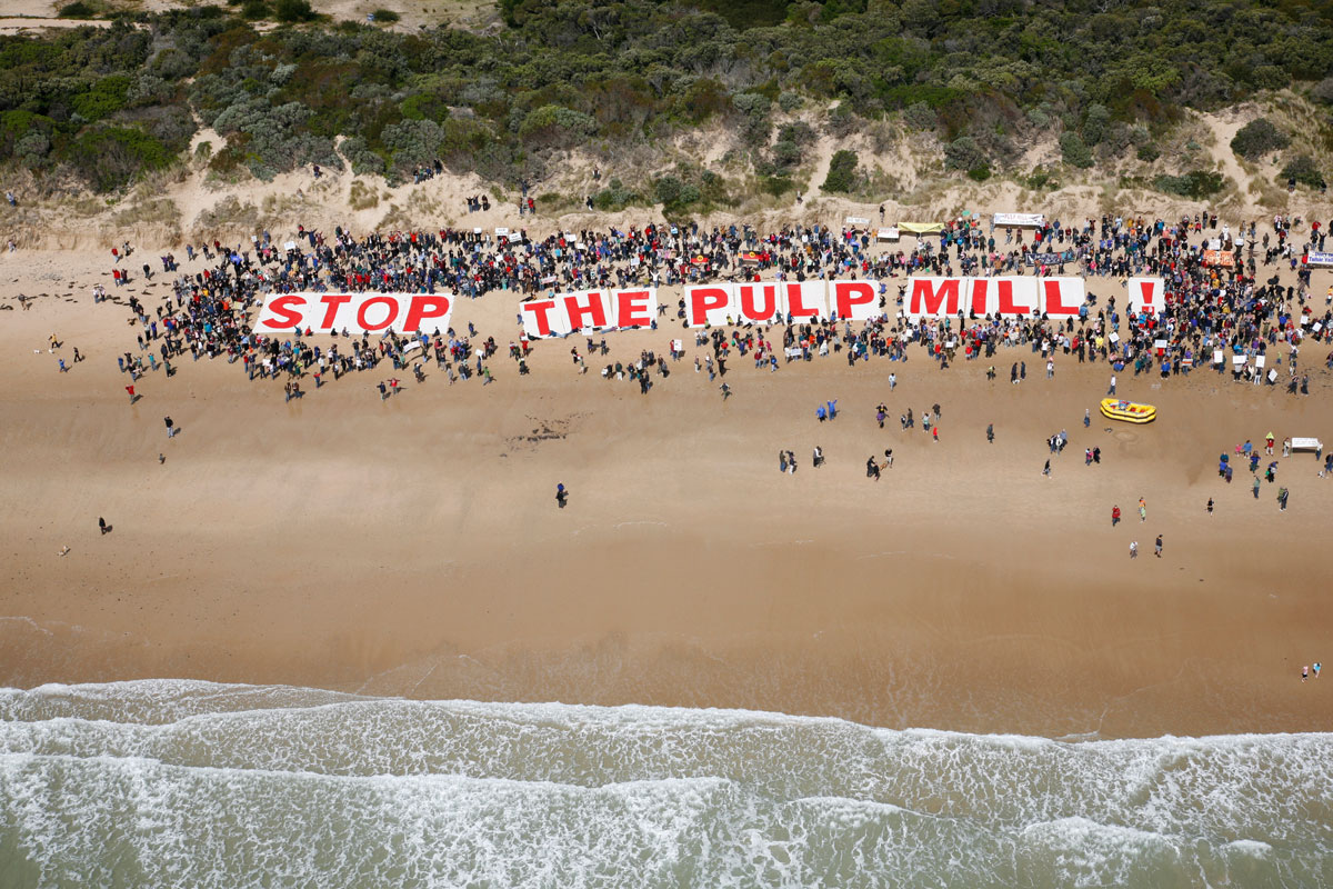 Photo: Action by The Wilderness Society to raise awareness of a proposed pulp mill in the Tasmanian Tamar Valley. Reichstein supported the No Pulp Mill Alliance in 2009.